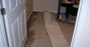 Basement Water and Mold Damage From Flooding