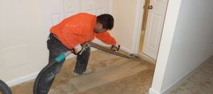 Agent Cleaning Up Flooded Carpet