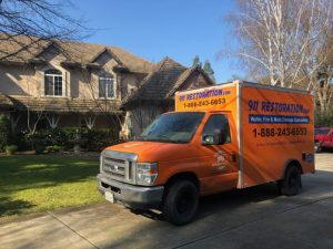 Mold Removal Milwaukee